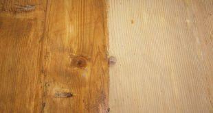 olio di lino cotto su legno