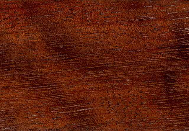 legno iroko